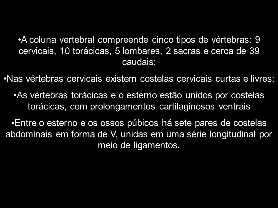 A coluna vertebral compreende cinco tipos de vértebras: 9 cervicais, 10 torácicas, 5 lombares, 2 sacras e cerca de 39 caudais; Nas vértebras cervicais