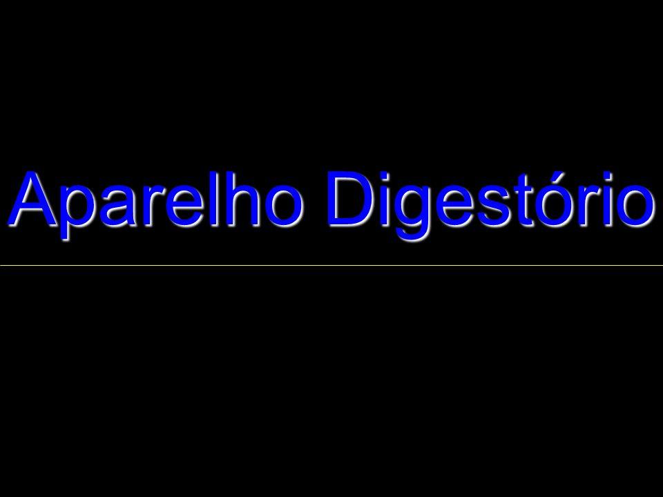 Aparelho Digestório