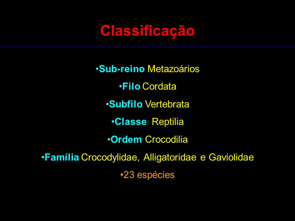 Classificação Sub-reino Metazoários Filo Cordata Subfilo Vertebrata Classe Reptilia Ordem Crocodilia Família Crocodylidae, Alligatoridae e Gaviolidae