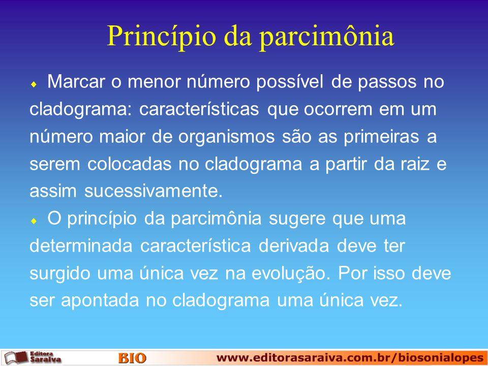 Princípio da parcimônia Marcar o menor número possível de passos no cladograma: características que ocorrem em um número maior de organismos são as pr