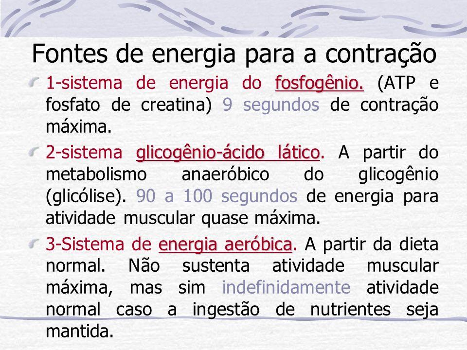 Fontes de energia para a contração fosfogênio. 1-sistema de energia do fosfogênio.