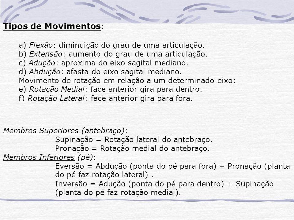 Tipos de Movimentos : a) Flexão: diminuição do grau de uma articulação.