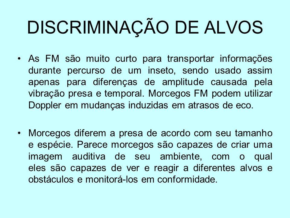 DISCRIMINAÇÃO DE ALVOS As FM são muito curto para transportar informações durante percurso de um inseto, sendo usado assim apenas para diferenças de a