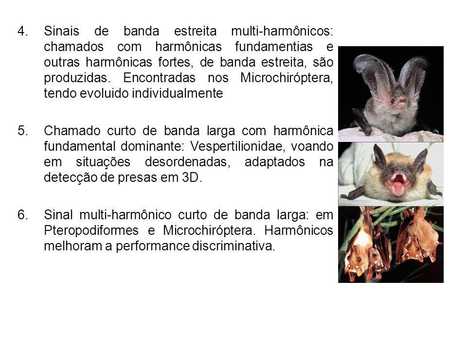 4.Sinais de banda estreita multi-harmônicos: chamados com harmônicas fundamentias e outras harmônicas fortes, de banda estreita, são produzidas. Encon
