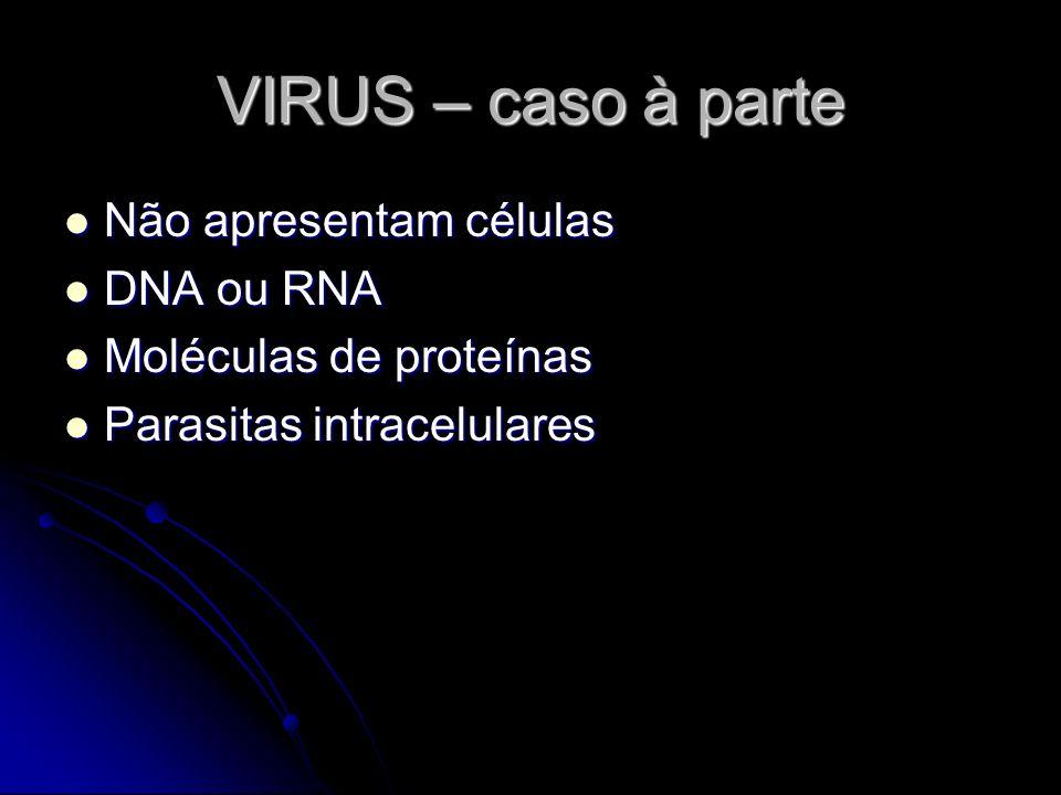 VIRUS – caso à parte Não apresentam células Não apresentam células DNA ou RNA DNA ou RNA Moléculas de proteínas Moléculas de proteínas Parasitas intra