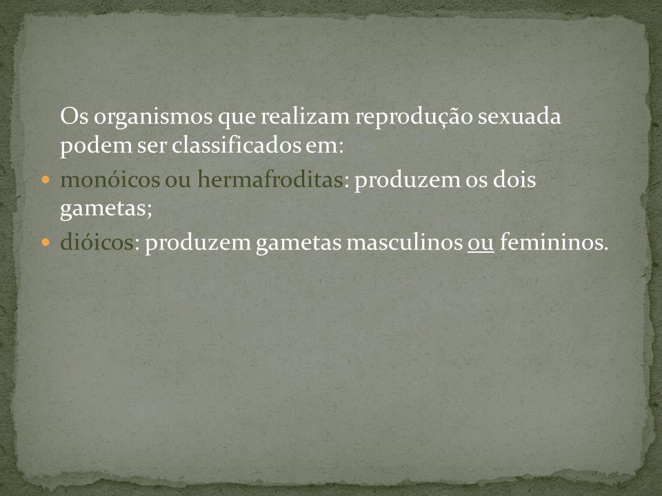 Os organismos que realizam reprodução sexuada podem ser classificados em: monóicos ou hermafroditas: produzem os dois gametas; dióicos: produzem gamet