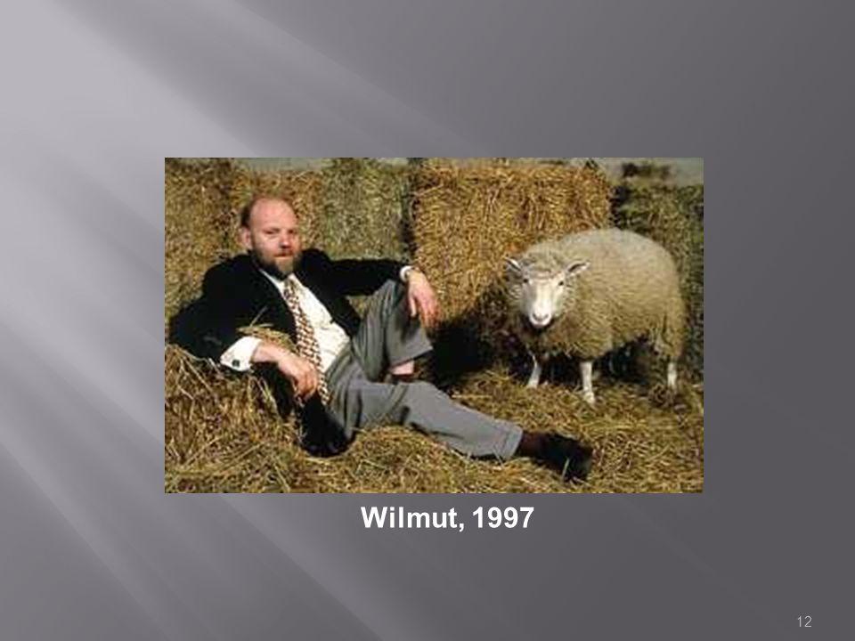 Wilmut, 1997 12