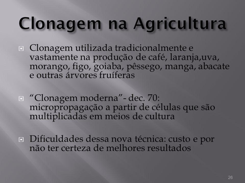 Clonagem utilizada tradicionalmente e vastamente na produção de café, laranja,uva, morango, figo, goiaba, pêssego, manga, abacate e outras árvores fru