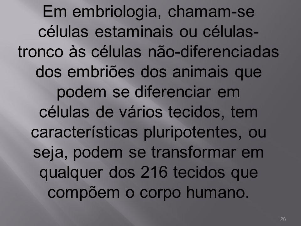 Em embriologia, chamam-se células estaminais ou células- tronco às células não-diferenciadas dos embriões dos animais que podem se diferenciar em célu