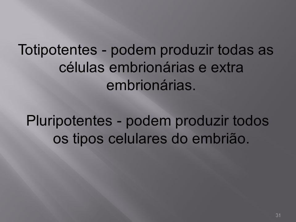 Totipotentes - podem produzir todas as células embrionárias e extra embrionárias. Pluripotentes - podem produzir todos os tipos celulares do embrião.