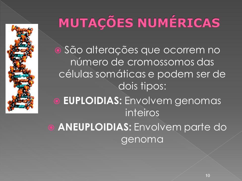 São alterações que ocorrem no número de cromossomos das células somáticas e podem ser de dois tipos: EUPLOIDIAS: Envolvem genomas inteiros ANEUPLOIDIAS: Envolvem parte do genoma 10