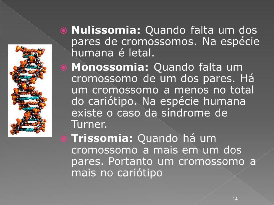 Nulissomia: Quando falta um dos pares de cromossomos. Na espécie humana é letal. Monossomia: Quando falta um cromossomo de um dos pares. Há um cromoss