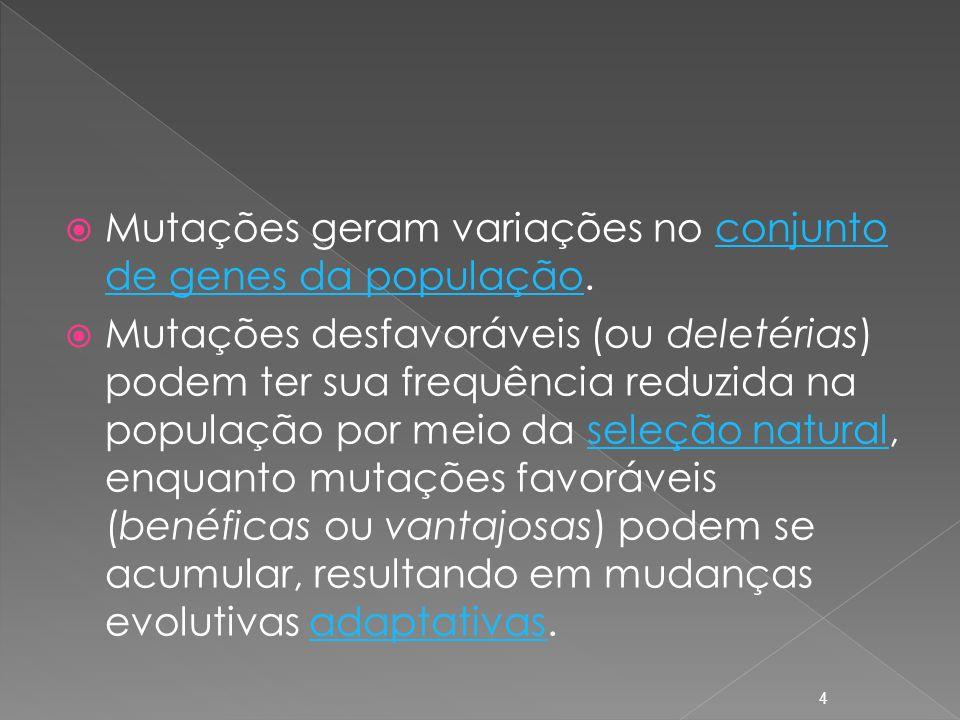 Mutações geram variações no conjunto de genes da população.conjunto de genes da população Mutações desfavoráveis (ou deletérias) podem ter sua frequência reduzida na população por meio da seleção natural, enquanto mutações favoráveis (benéficas ou vantajosas) podem se acumular, resultando em mudanças evolutivas adaptativas.seleção naturaladaptativas 4