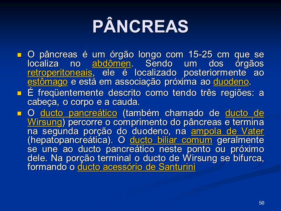 PÂNCREAS O pâncreas é um órgão longo com 15-25 cm que se localiza no abdômen.