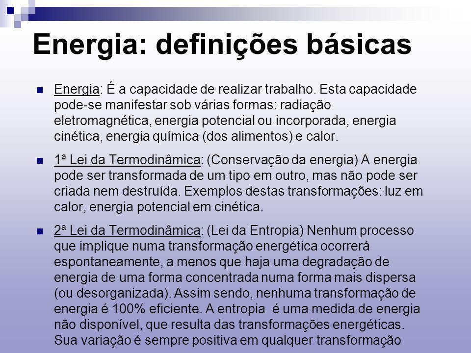 Energia: definições básicas Energia: É a capacidade de realizar trabalho.