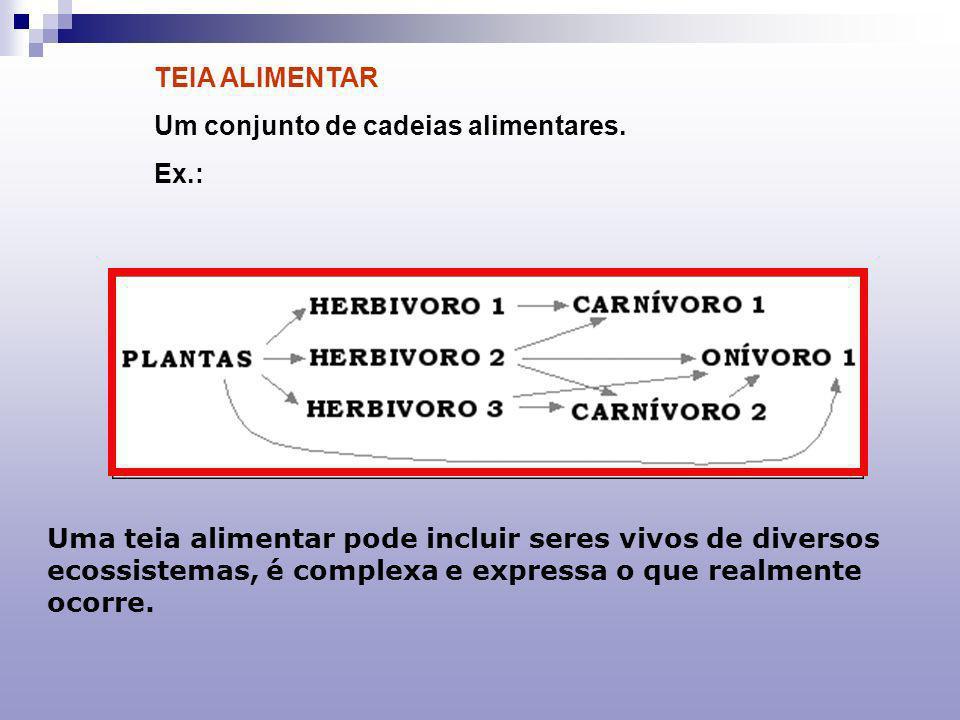 COMPONENTES DE UMA CADEIA ALIMENTAR - PRODUTORES: AUTÓTROFOS: FOTOSSÍNTESE QUIMIOSSÍNTESE - CONSUMIDORES: HETERÓTROFOS: HERBÍVOROS CARNÍVOROS ONÍVOROS - DECOMPOSITORES: SAPRÓFAGOS:(FUNGOS E BACTÉRIAS)