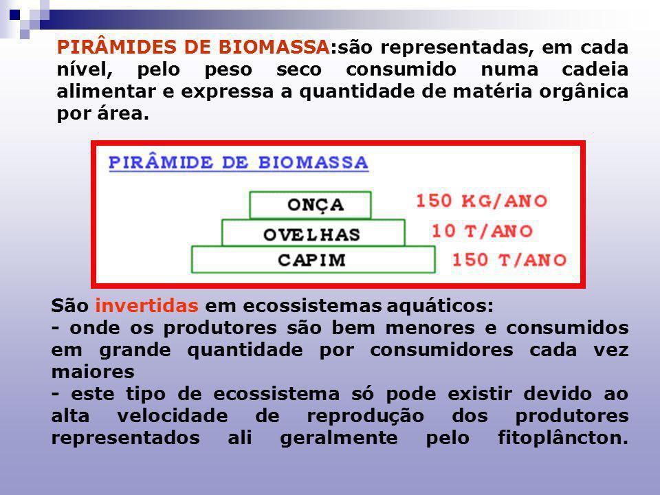 PPIRÂMIDES ECOLÓGICAS Representações gráficas das relações alimentares de uma comunidade.