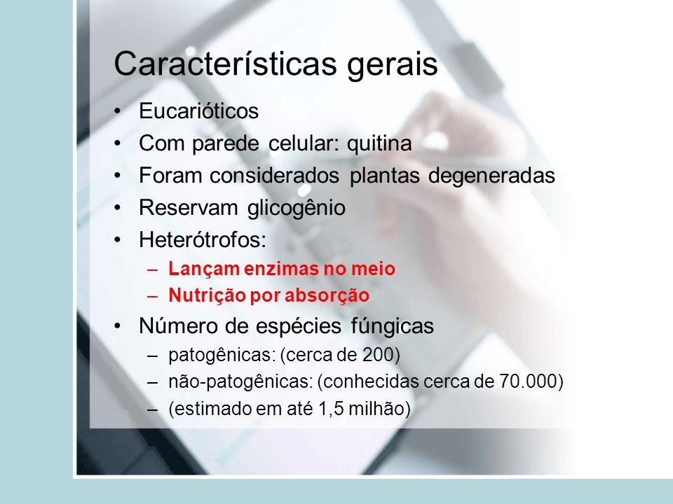 Fungos - patologias