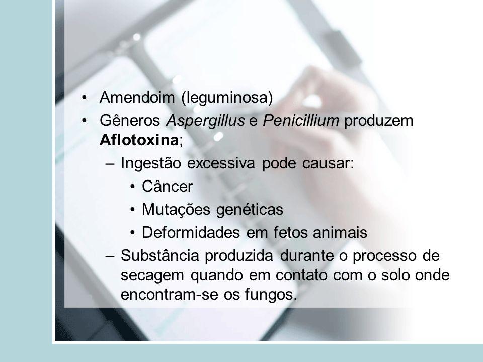 Amendoim (leguminosa) AflotoxinaGêneros Aspergillus e Penicillium produzem Aflotoxina; –Ingestão excessiva pode causar: Câncer Mutações genéticas Defo