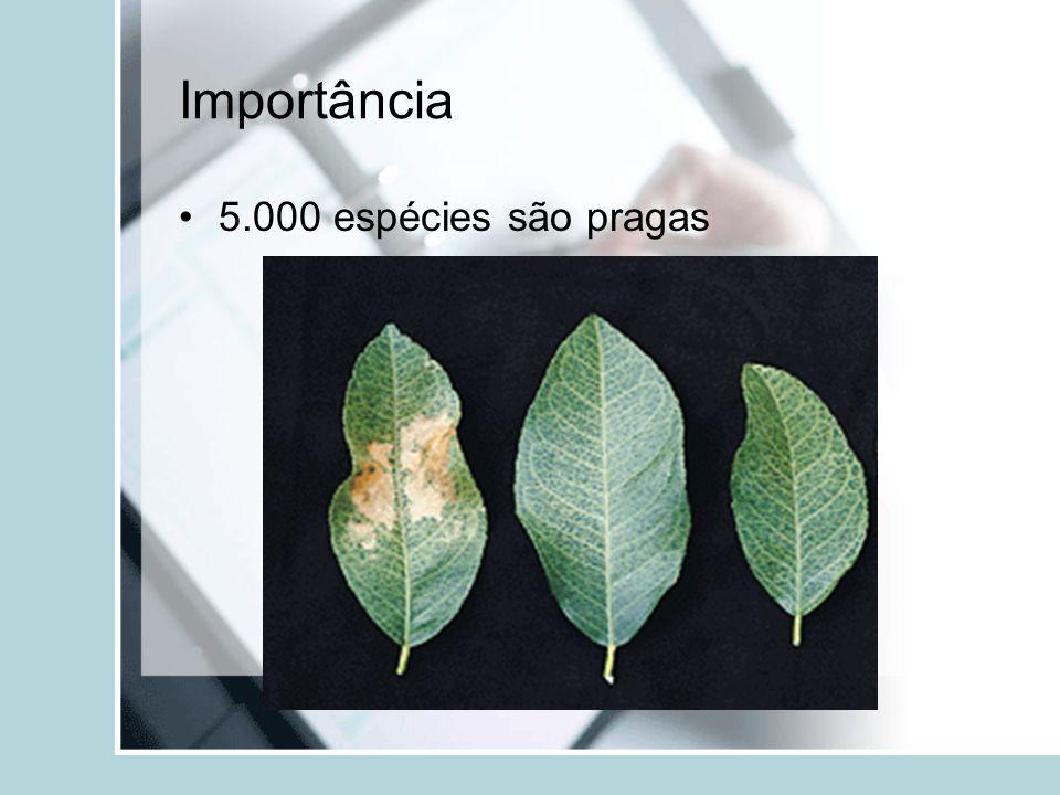 Amendoim sob suspeita: Na década de 1960, o amendoim importado do Brasil, utilizado na fabricação de ração para aves no Reino Unido, foi considerado responsável pela morte de milhares de animais.