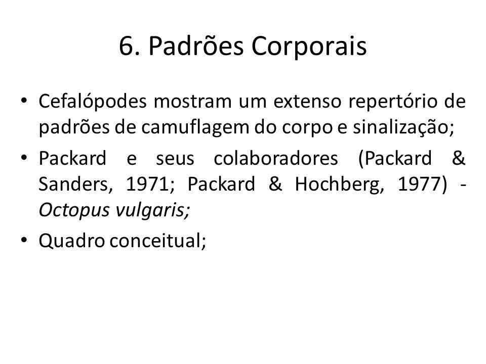 6. Padrões Corporais Cefalópodes mostram um extenso repertório de padrões de camuflagem do corpo e sinalização; Packard e seus colaboradores (Packard