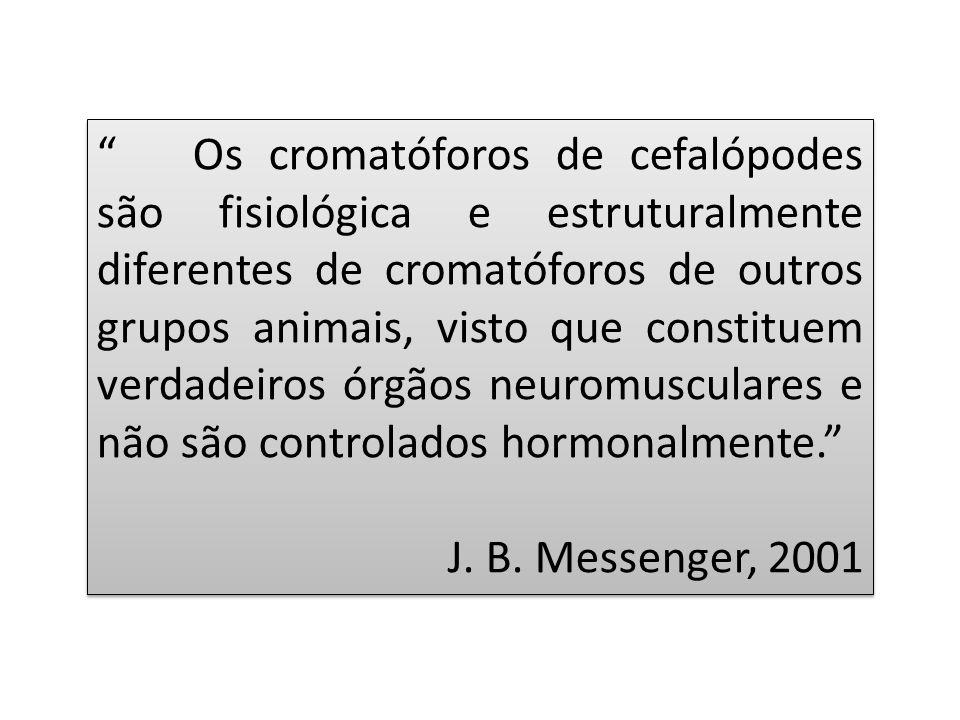Os cromatóforos de cefalópodes são fisiológica e estruturalmente diferentes de cromatóforos de outros grupos animais, visto que constituem verdadeiros