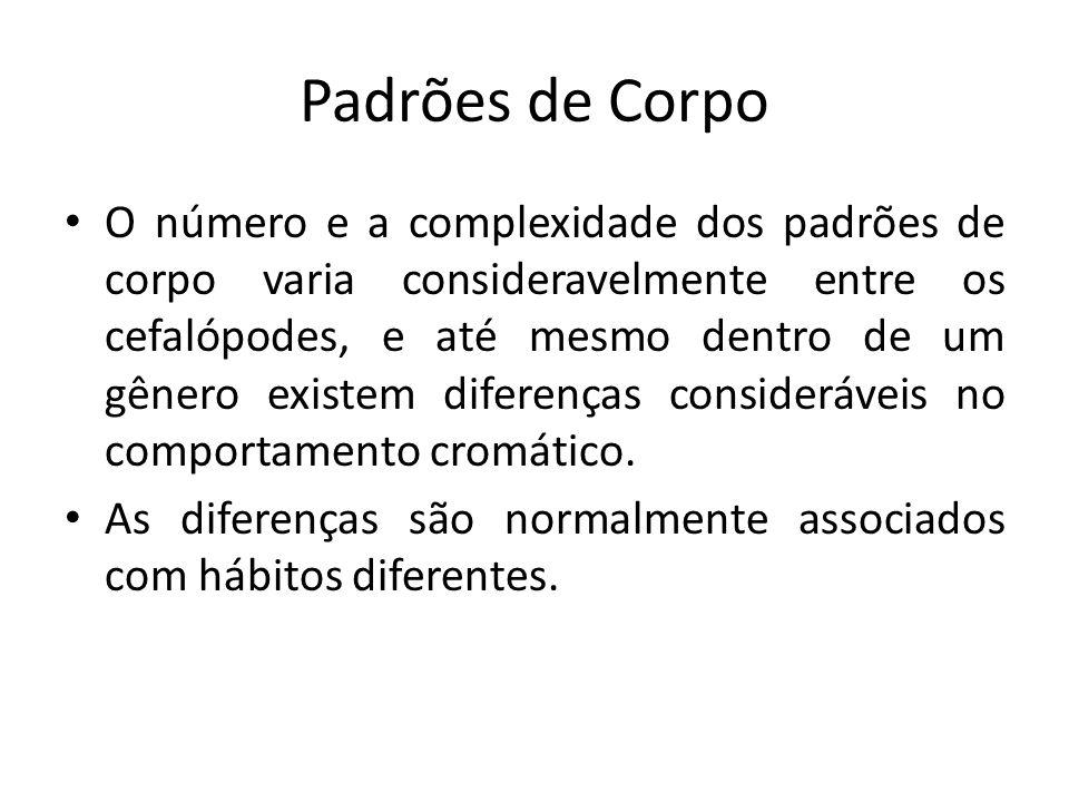 Padrões de Corpo O número e a complexidade dos padrões de corpo varia consideravelmente entre os cefalópodes, e até mesmo dentro de um gênero existem
