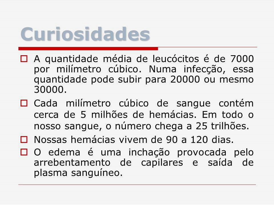 Curiosidades A quantidade média de leucócitos é de 7000 por milímetro cúbico. Numa infecção, essa quantidade pode subir para 20000 ou mesmo 30000. Cad