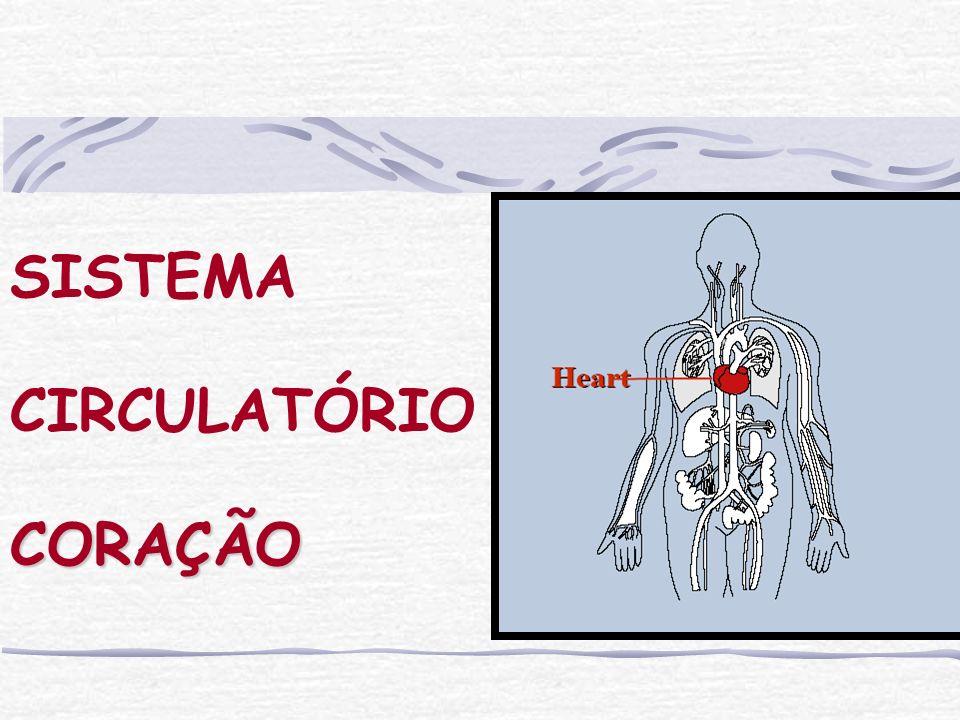 Sistema Cardiovascular Normalmente a circulação ocorre na seguinte ordem: artérias capilares veias.