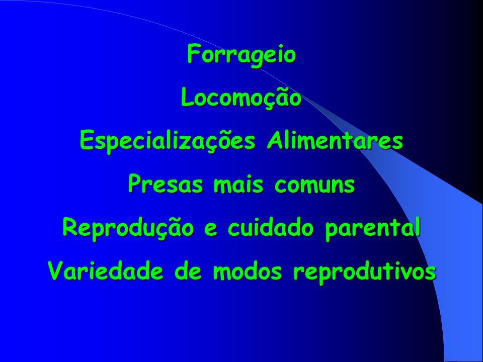 ForrageioLocomoção Especializações Alimentares Presas mais comuns Reprodução e cuidado parental Variedade de modos reprodutivos