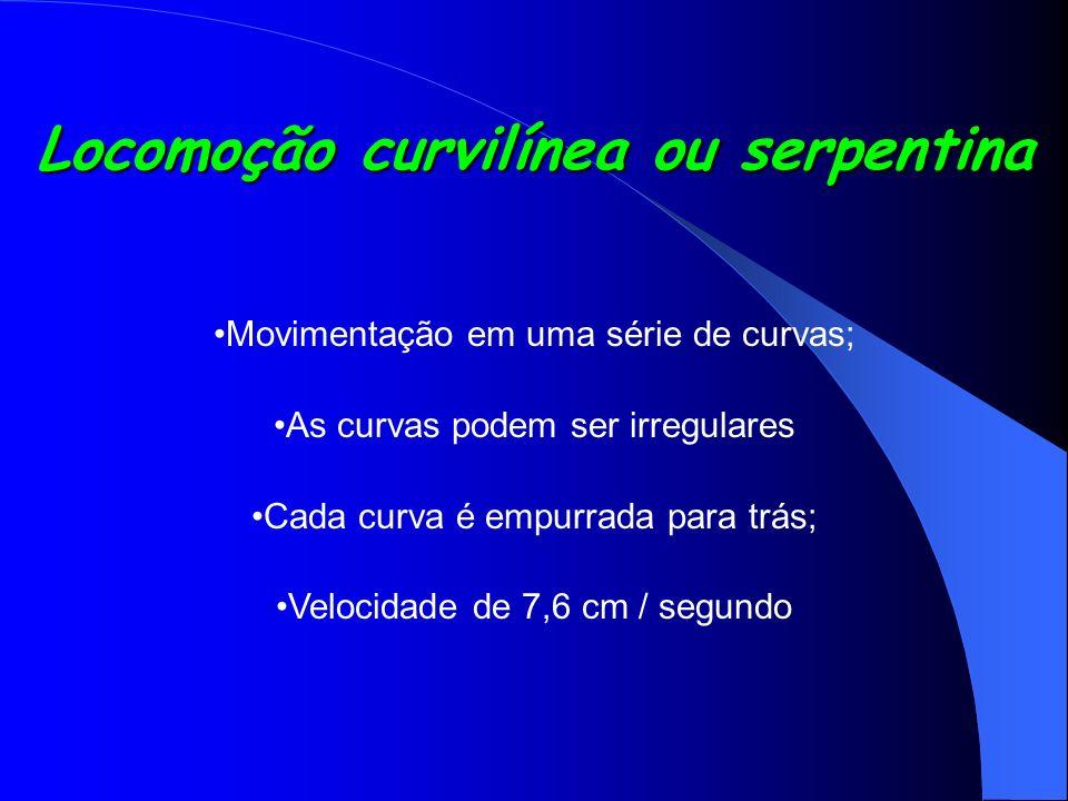 Locomoção curvilínea ou serpentina Movimentação em uma série de curvas; As curvas podem ser irregulares Cada curva é empurrada para trás; Velocidade d
