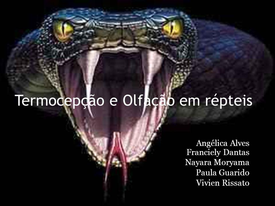Termocepção e Olfação em répteis Angélica Alves Franciely Dantas Nayara Moryama Paula Guarido Vivien Rissato