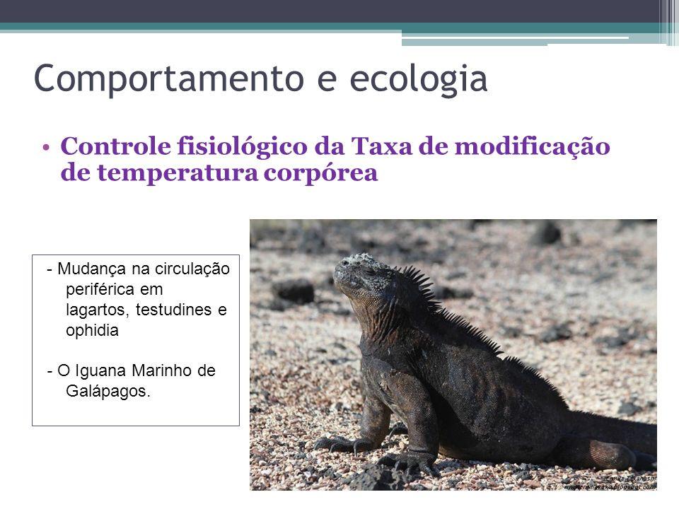 Comportamento e ecologia Controle fisiológico da Taxa de modificação de temperatura corpórea - Mudança na circulação periférica em lagartos, testudine