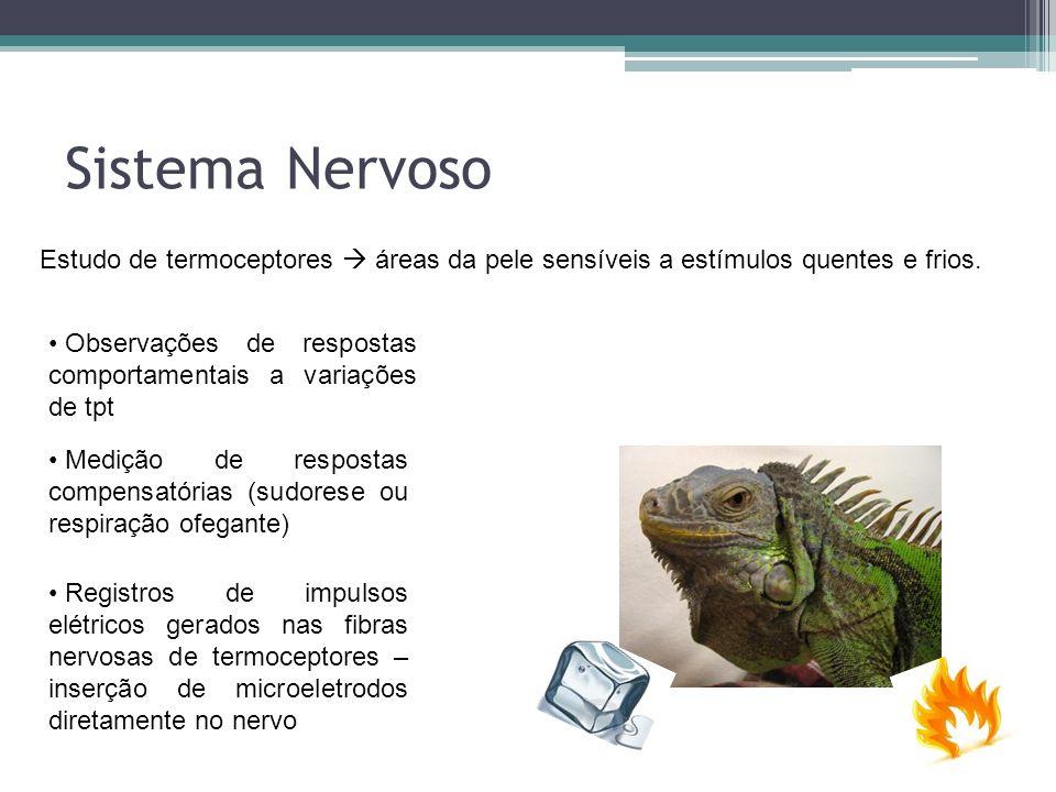 Sistema Nervoso Estudo de termoceptores áreas da pele sensíveis a estímulos quentes e frios. Observações de respostas comportamentais a variações de t