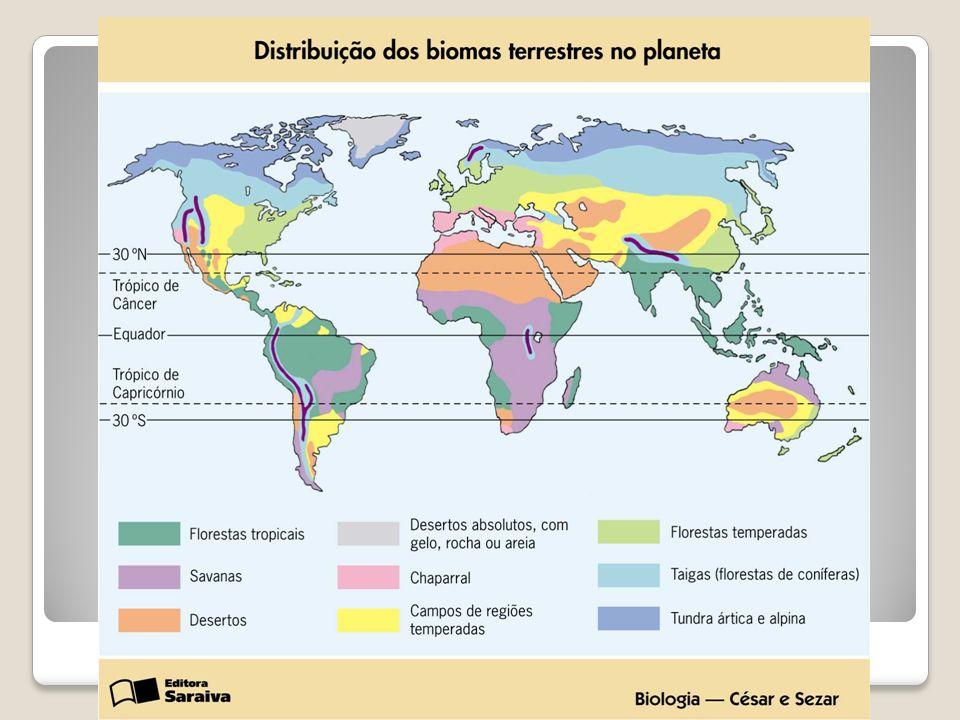 Rio+10 Refere-se à Cúpula Mundial sobre Desenvolvimento Sustentável, realizada em setembro de 2002 em Joanesburgo, na África do Sul.