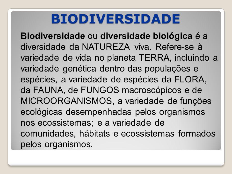 BIODIVERSIDADE Biodiversidade ou diversidade biológica é a diversidade da NATUREZA viva.