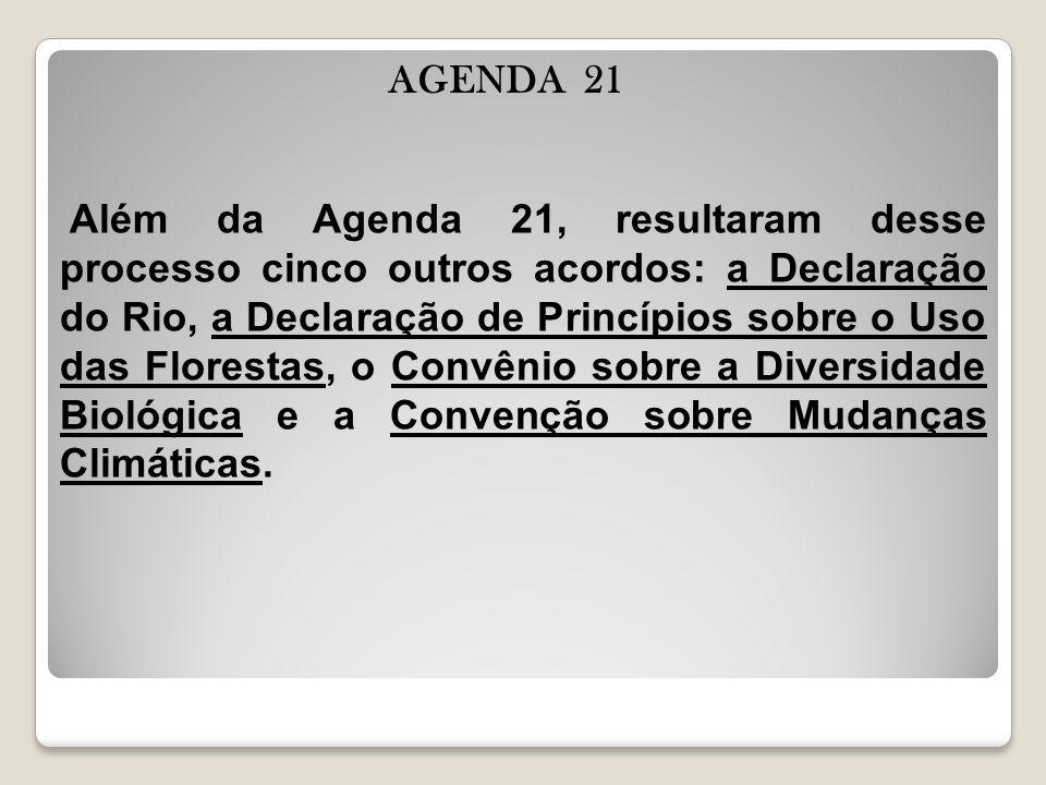 AGENDA 21 Além da Agenda 21, resultaram desse processo cinco outros acordos: a Declaração do Rio, a Declaração de Princípios sobre o Uso das Florestas, o Convênio sobre a Diversidade Biológica e a Convenção sobre Mudanças Climáticas.