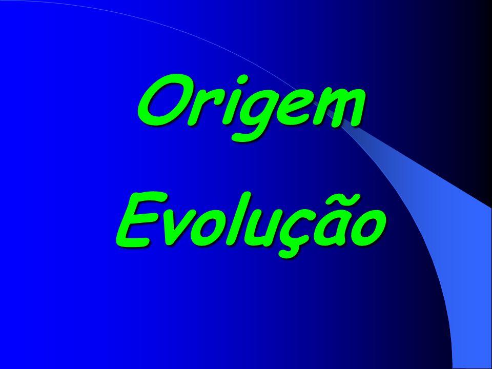 OrigemEvolução