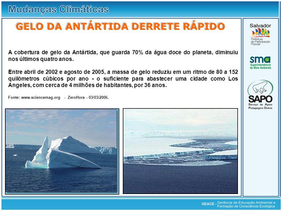 A cobertura de gelo da Antártida, que guarda 70% da água doce do planeta, diminuiu nos últimos quatro anos. Entre abril de 2002 e agosto de 2005, a ma