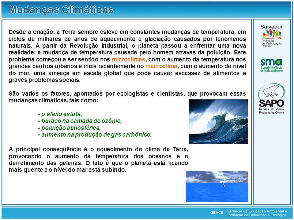 América Latina - Diminuição das geleiras na América Latina.