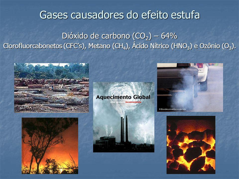 Gases causadores do efeito estufa Dióxido de carbono (CO 2 ) – 64% Clorofluorcabonetos (CFCs), Metano (CH 4 ), Ácido Nítrico (HNO 3 ) e Ozônio (O 3 ).