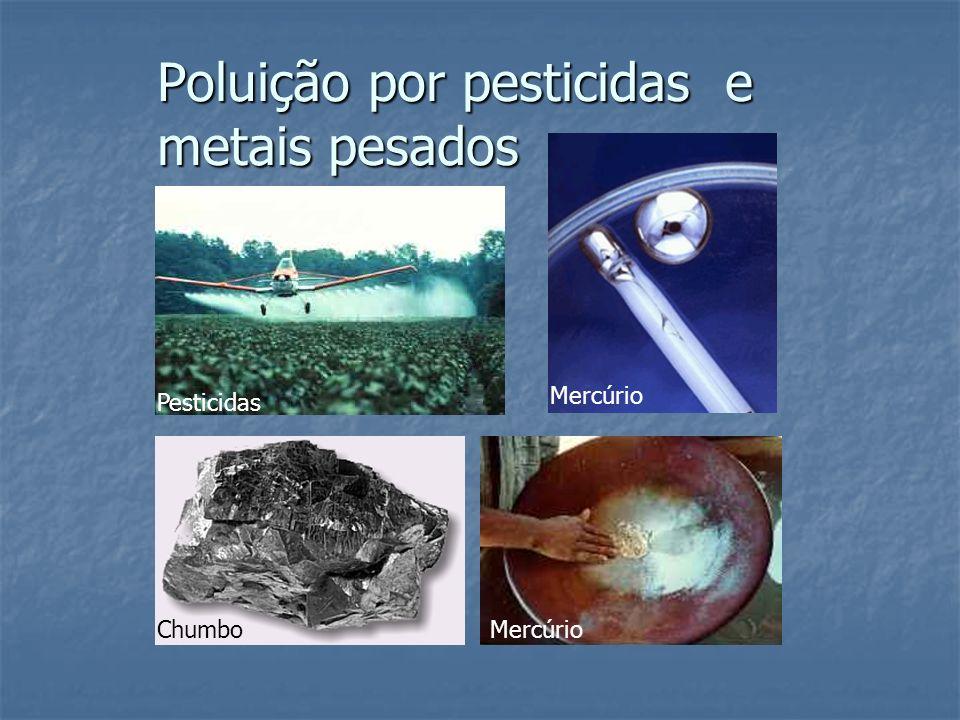 Poluição por pesticidas e metais pesados Pesticidas Chumbo Mercúrio