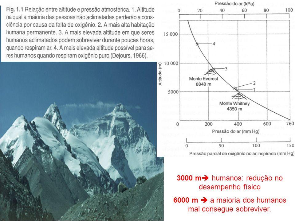 3000 m humanos: redução no desempenho físico 6000 m a maioria dos humanos mal consegue sobreviver.