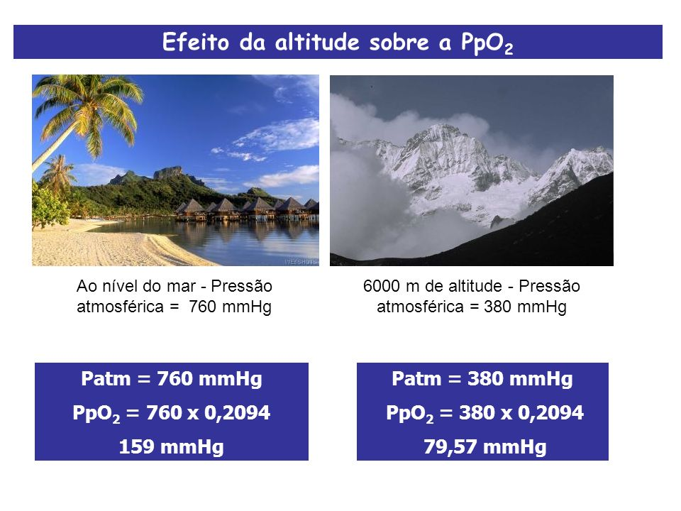 Efeito da altitude sobre a PpO 2 Ao nível do mar - Pressão atmosférica = 760 mmHg 6000 m de altitude - Pressão atmosférica = 380 mmHg Patm = 380 mmHg