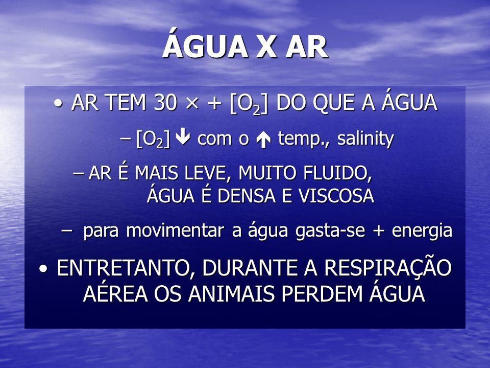 ÁGUA X AR AR TEM 30 × + [O 2 ] DO QUE A ÁGUAAR TEM 30 × + [O 2 ] DO QUE A ÁGUA –[O 2 ] com o temp., salinity –AR É MAIS LEVE, MUITO FLUIDO, ÁGUA É DEN