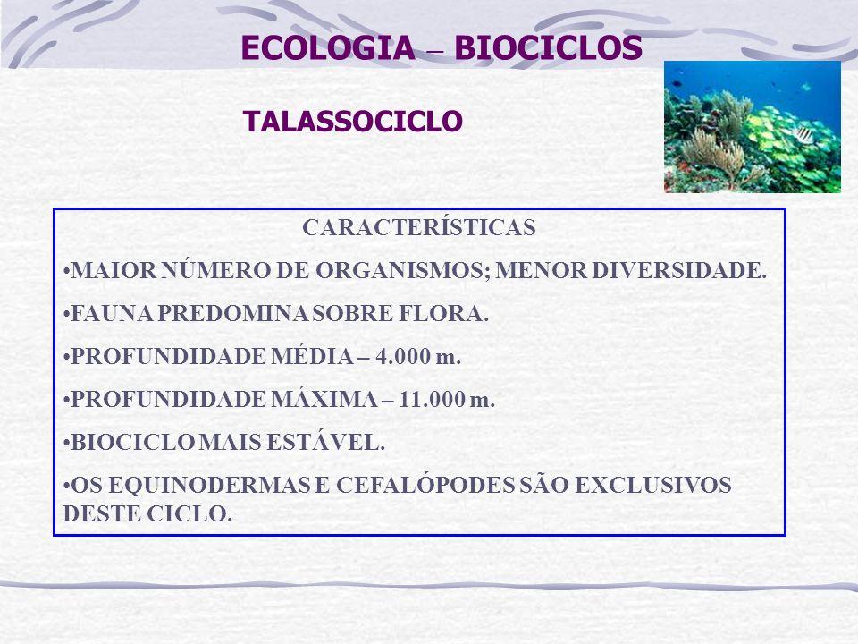 ECOLOGIA – BIOCICLOS TALASSOCICLO CARACTERÍSTICAS MAIOR NÚMERO DE ORGANISMOS; MENOR DIVERSIDADE. FAUNA PREDOMINA SOBRE FLORA. PROFUNDIDADE MÉDIA – 4.0