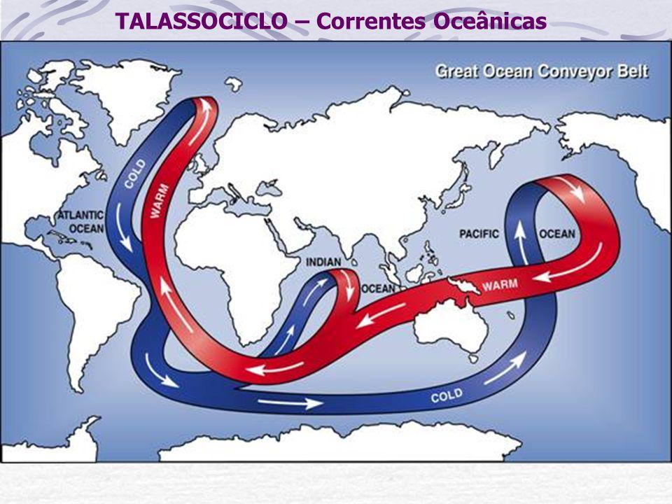 TALASSOCICLO – Correntes Oceânicas