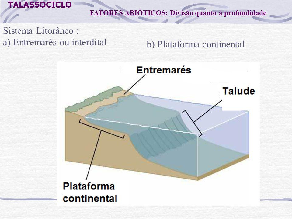 TALASSOCICLO FATORES ABIÓTICOS: Divisão quanto à profundidade Sistema Litorâneo : a) Entremarés ou interdital b) Plataforma continental