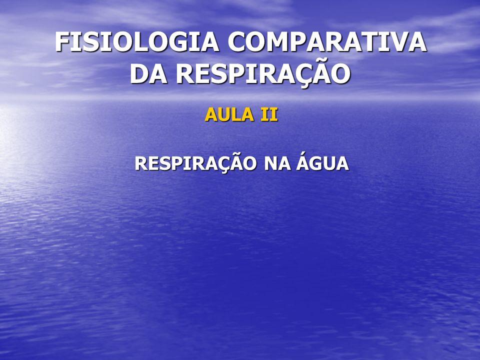 FISIOLOGIA COMPARATIVA DA RESPIRAÇÃO AULA II RESPIRAÇÃO NA ÁGUA