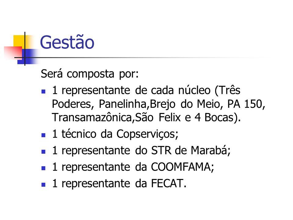 Gestão Será composta por: 1 representante de cada núcleo (Três Poderes, Panelinha,Brejo do Meio, PA 150, Transamazônica,São Felix e 4 Bocas). 1 técnic